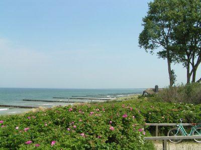 Die Ostsee bei Ahrenshoop