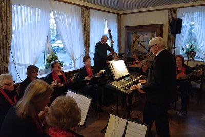 Das Mandolinen-Orchester unter Leitung von Heinz Keller.